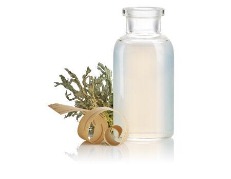 ingredients_birch-water_450x350
